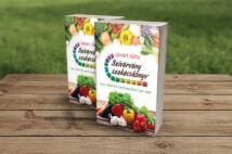 Szivárvány szakácskönyv - Gyors étkek élő szárítmányokból 1 perc alatt!