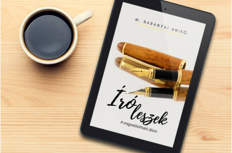 M. Baranyai Anikó: Író leszek (epub)