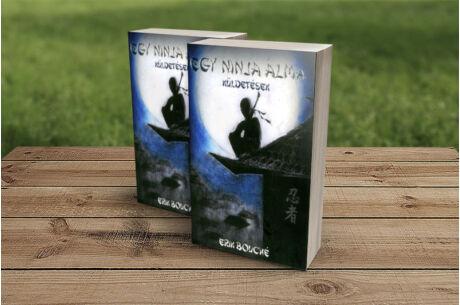 Egy ninja álma - Küldetések