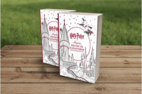 Harry Potter: Mágikus helyek és karakterek - színezőkönyv