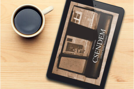 Dittrich Panka: Csendem (e-könyv)